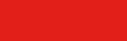 Logo DLV Nike